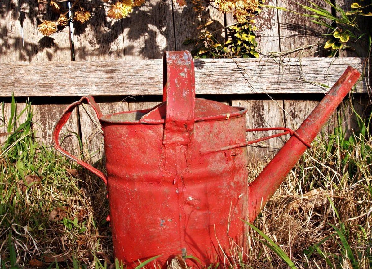 Le vinaigre blanc : un désherbant naturel pour protéger l'environnement mais pas que!