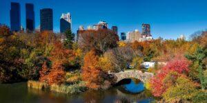 Partir en automne aux Etats-Unis : quelles sont les activités en cette période ?