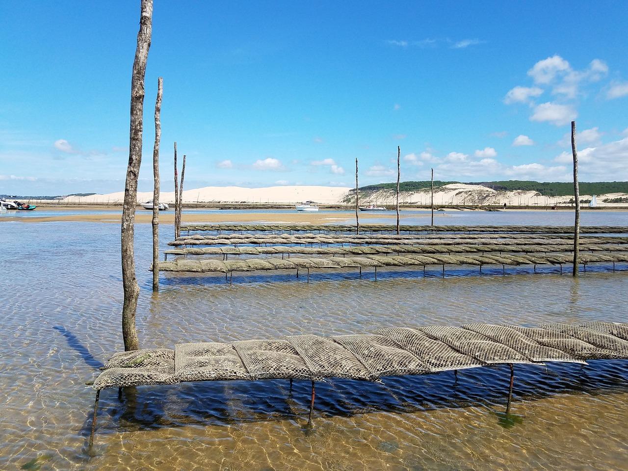 Parc à huîtres en Gironde