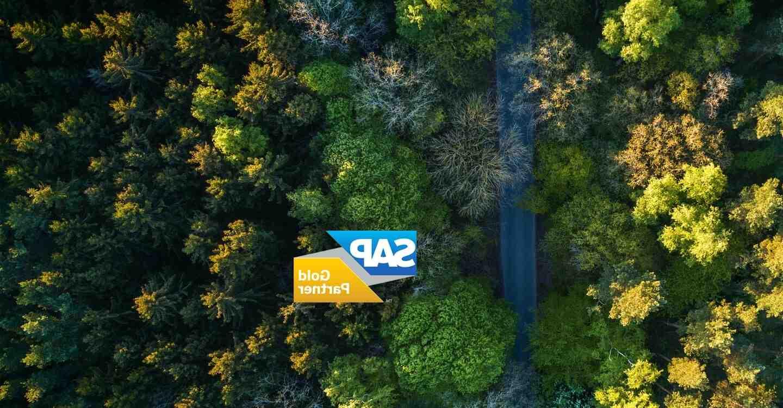 C'est quoi le logiciel SAP ?