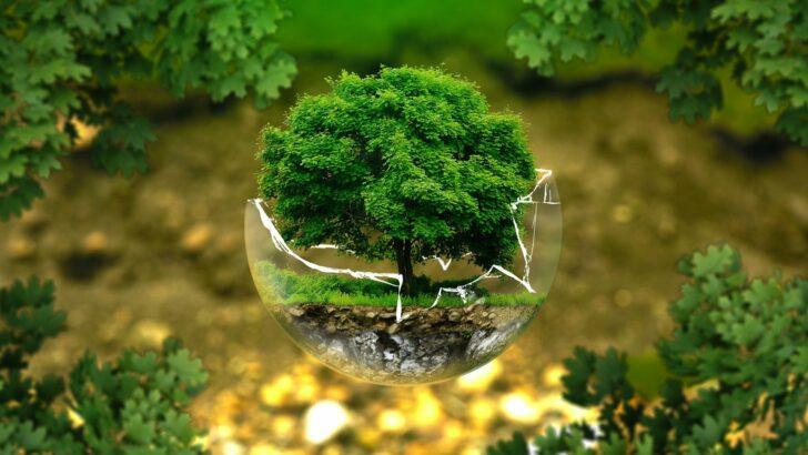 Comment peut-on calculer l'impact du numérique sur l'environnement ?